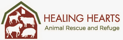 Healing Hearts Animal Rescue
